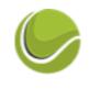 Логотип организации Tennis-Play.com